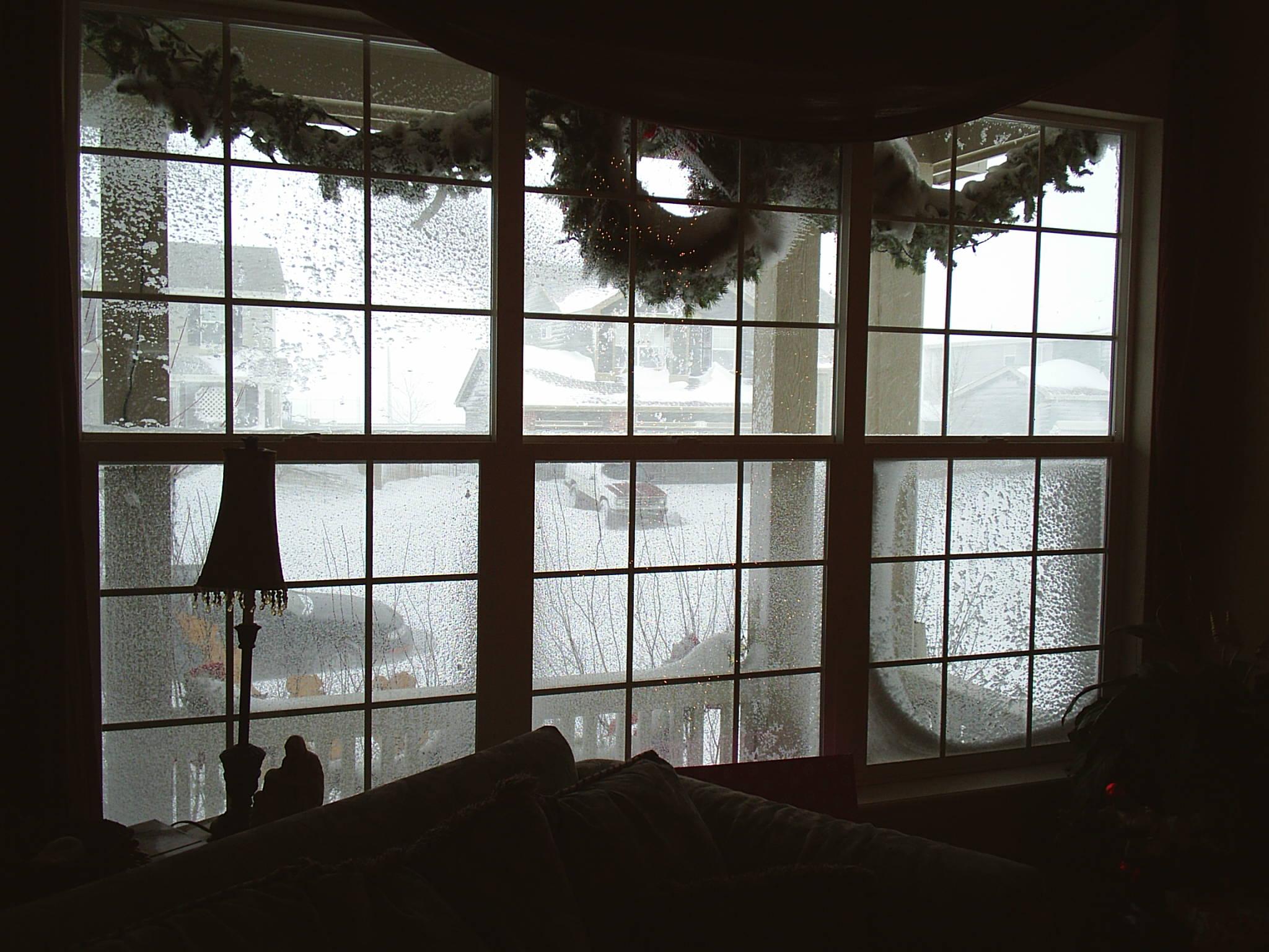 blizzard_window_12_20_061.JPG