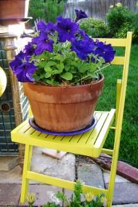 purple-petunias1