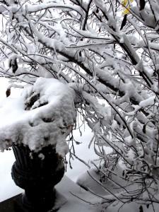 snow-day-156