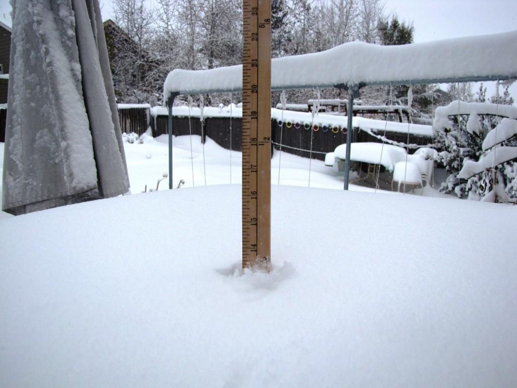 snow-jovan-013