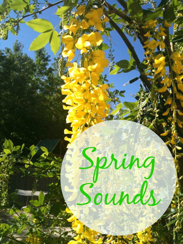 spring sounds