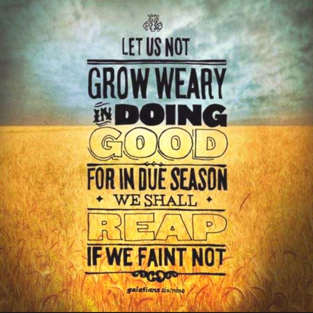 let us not grow weary in doing good