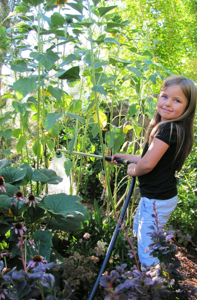 averi and the sunflowers