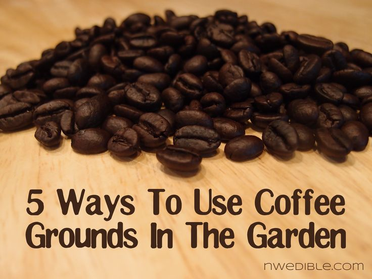 http://www.nwedible.com/2013/02/5-ways-to-use-coffee-grounds-in-the-garden.html