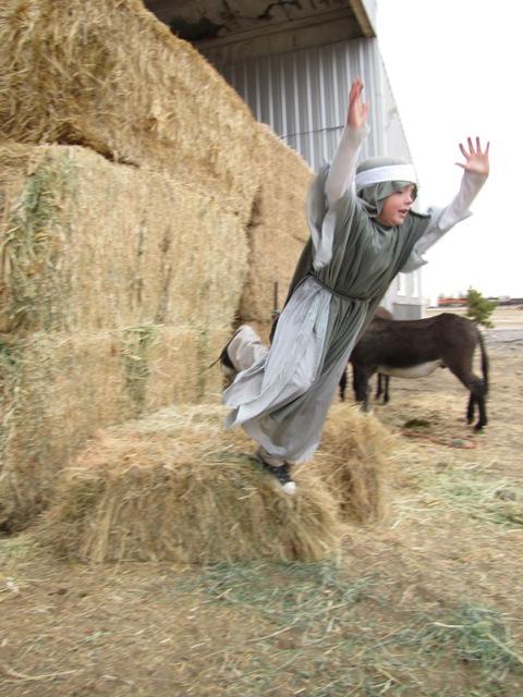 Nativity 2010 (10)