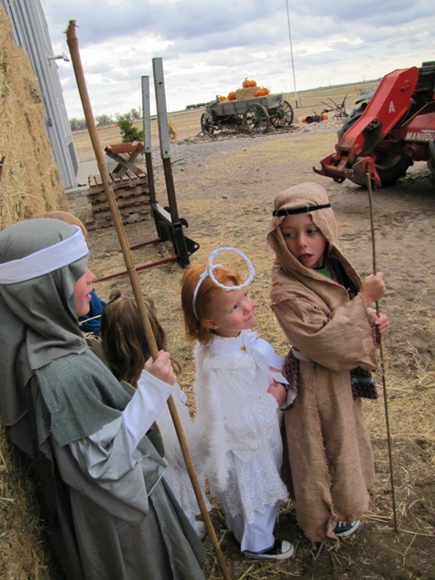 Nativity 2010 (2)