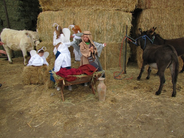 Nativity 2010 (6)