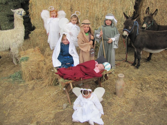 Nativity 2010 (7)