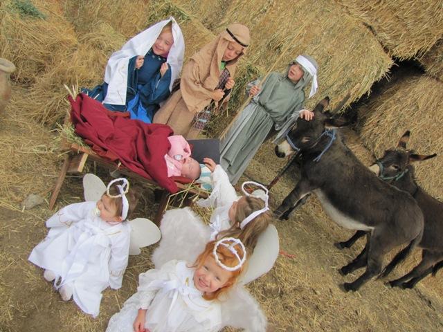 Nativity 2010 (8)