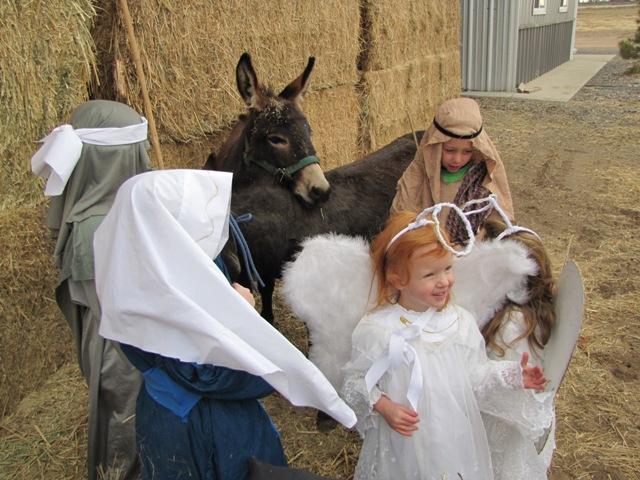 Nativity 2010 (9)