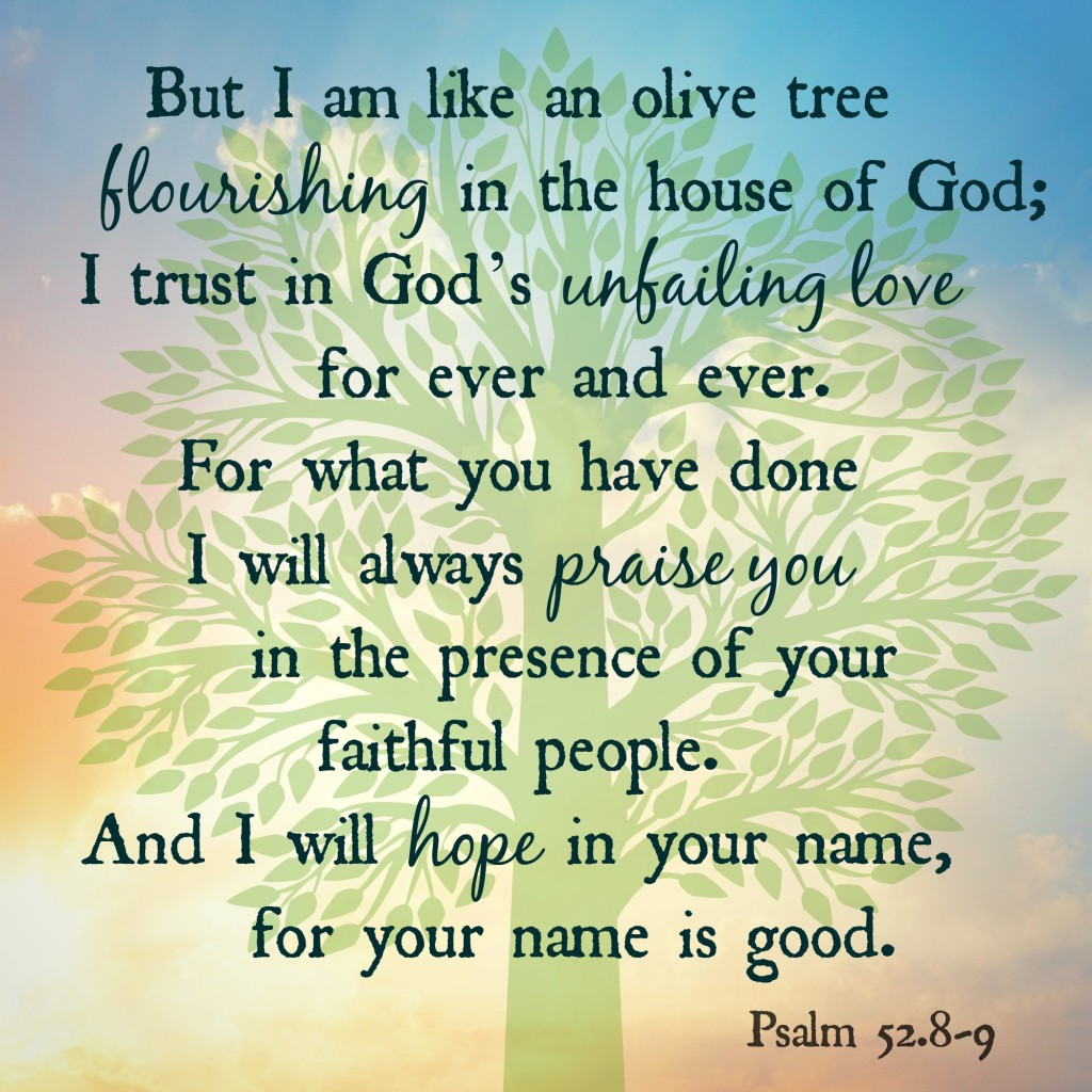 but i am like an olive tree