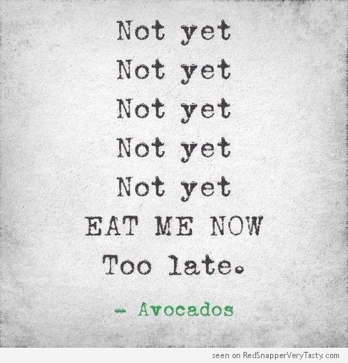 not yet avocado print
