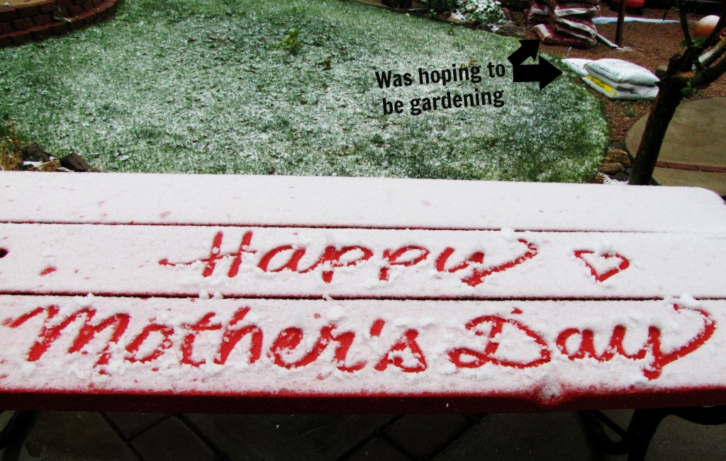 snow on mothers day