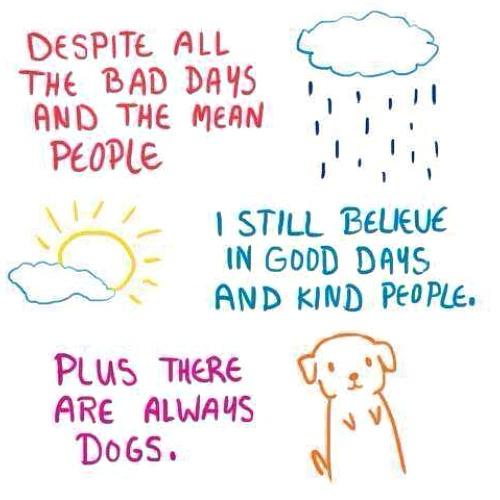 always dogs