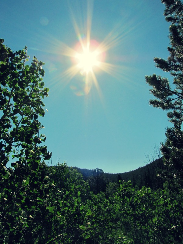 morning at peaceful valley july 2014