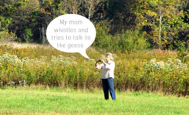 geese mom talks #septembermorn #nwidiana