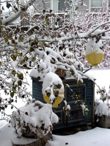 snow-day-2-009