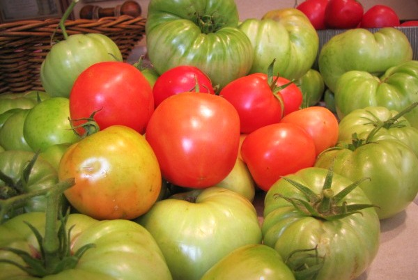 end of summer tomato assortment