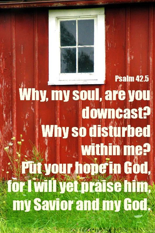 psalm 42.5